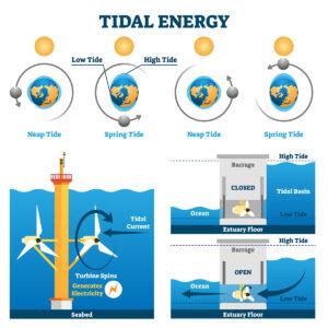diagram of tidal turbines and tidal barrage